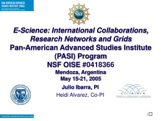E-Science: International Collaborations, Research Networks and Grids