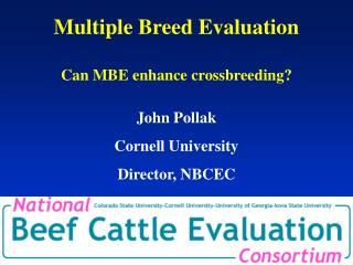 Multiple Breed Evaluation Can MBE enhance crossbreeding?
