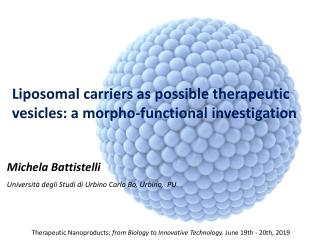 Liposomal carriers as possible therapeutic vesicles : a morpho-functional investigation
