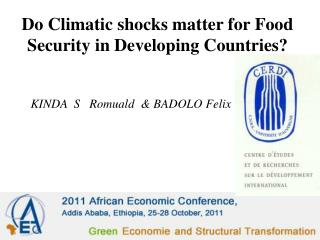 Do Climatic shocks matter for Food Security in Developing Countries?