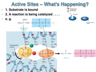Active Sites – What's Happening?