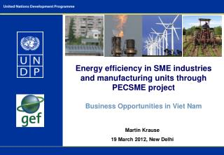 Energy efficiency in SME industries and manufacturing units through PECSME project   Business Opportunities in Viet Nam