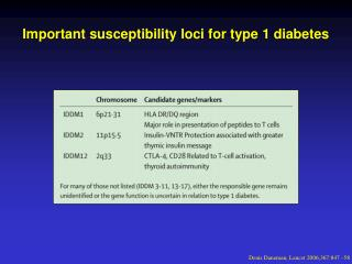 Important susceptibility loci for type 1 diabetes