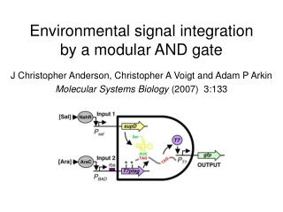 Environmental signal integration by a modular AND gate