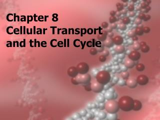 Chapter 8 Cellular Transport  and the Cell Cycle