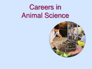 Careers in Animal Science