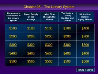 Chapter 26 – The Urinary System