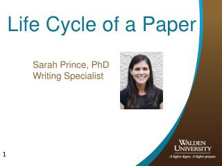 Life Cycle of a Paper