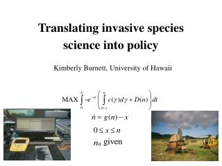 Translating invasive species science into policy