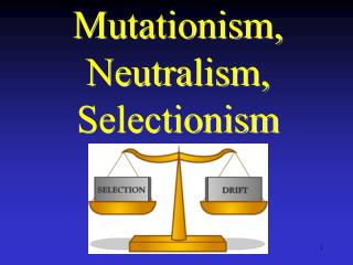 Mutationism, Neutralism, Selectionism