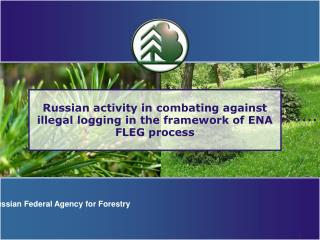 Russian activity in combating against illegal logging in the framework of ENA FLEG process