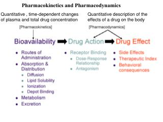 Quantitative description of the effects of a drug on the body