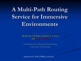 A Multi-Path Routing Service for Immersive Environments