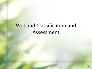 Wetland Delineation and Classification