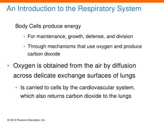 An Introduction to the Respiratory System