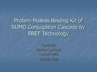 Protein-Protein Binding Kit of SUMO Conjugation Cascade by FRET Technology