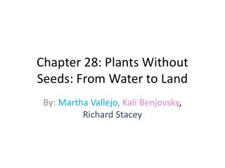 Chapter 28: Plants Without Seeds: From Water to Land