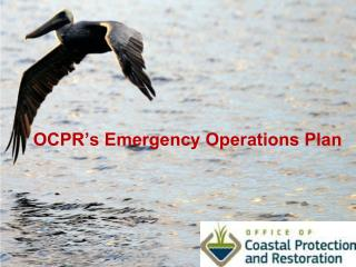 OCPR's Emergency Operations Plan