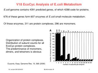 V18 EcoCyc Analysis of E.coli Metabolism