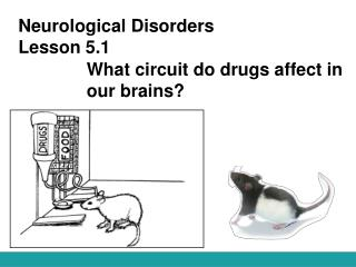 Neurological Disorders Lesson 5.1