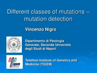 Different classes of mutations – mutation detection