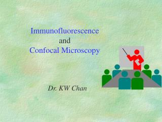 Immunofluorescence and Confocal Microscopy