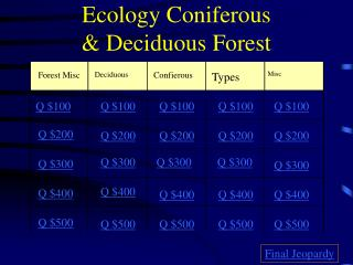 Ecology Coniferous & Deciduous Forest
