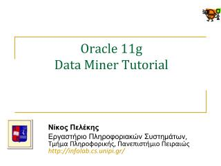 Oracle 11g Data Miner Tutorial