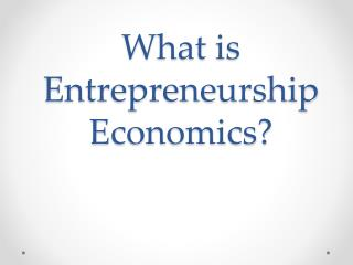 What is  Entrepreneurship  Economics?