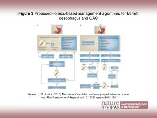 Figure 3  Proposed –omics-based management algorithms for Barrett oesophagus and OAC