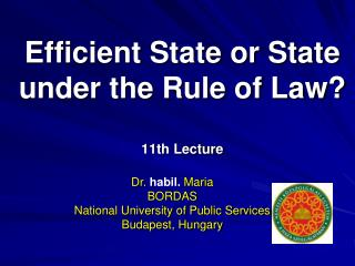 Efficient State or State under the Rule of Law? 11th Lecture