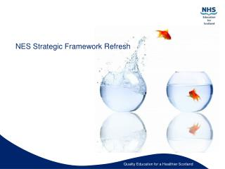 NES Strategic Framework Refresh