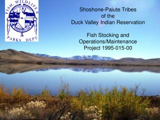 Shoshone-Paiute Tribes  of the  Duck Valley Indian Reservation