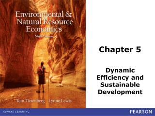 Chapter 5 Dynamic Efficiency and Sustainable Development
