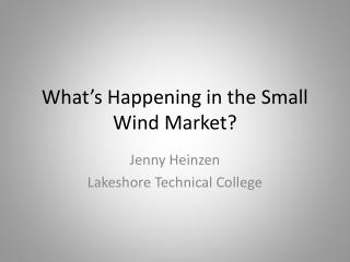 What's Happening in the Small Wind Market?