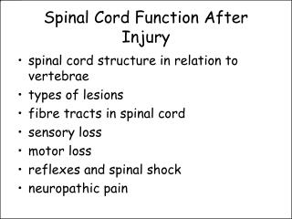 Spinal Cord Function After Injury