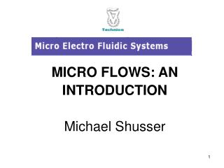 MICRO FLOWS: AN INTRODUCTION Michael Shusser
