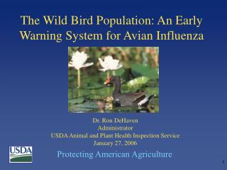 The Wild Bird Population: An Early Warning System for Avian Influenza