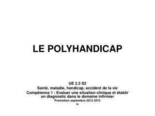 LE POLYHANDICAP