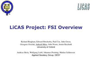 LiCAS Project: FSI Overview