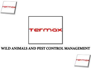Brampton Pest Management