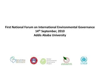 First National Forum on International Environmental Governance 14 th  September, 2010