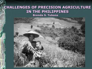 CHALLENGES OF PRECISION AGRICULTURE IN THE PHILIPPINES                     Brenda S. Tubana