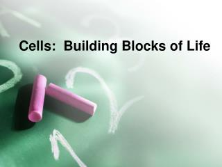 Cells:  Building Blocks of Life
