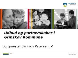 Borgmester Jannich Petersen, V