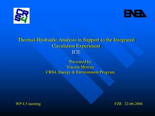 Thermal-Hydraulic Analysis in Support to the Integrated Circulation Experiment ICE
