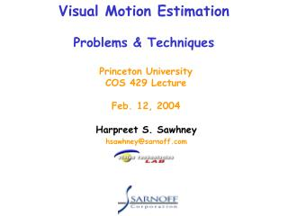 Visual Motion Estimation Problems & Techniques