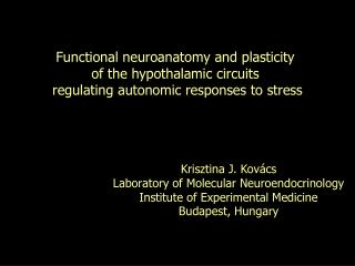 Functional neuroanatomy and plasticity  of the hypothalamic circuits