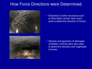 How Force Directions were Determined