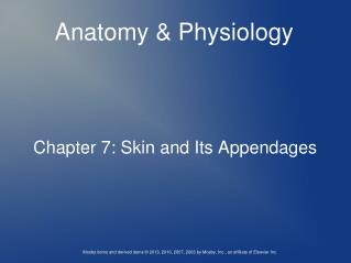 Chapter 7: Skin and Its Appendages